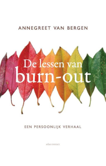 De lessen van Burn-out - Annegreet van Bergen