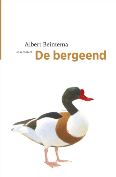 De bergeend - Albert Beintema
